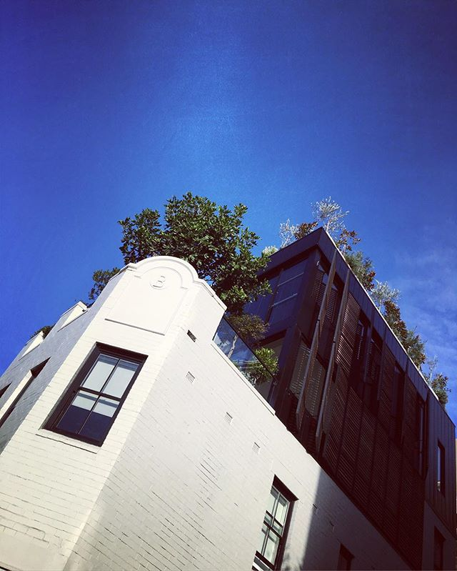 artfully-crafted-rooftop-addition-contrasts-beautifully-against-the-original-building-beneath...the-